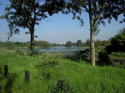 Kingshurst Lake looking east. Kingshurst itself is out of site behind the trees on the left of the photograph. The flats of central Chelmsley Wood are in the background. The lake powered Babbs Mill at the near end of the lake - see Tile Cross.