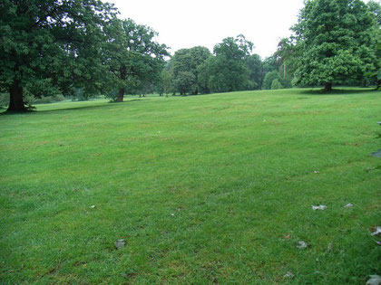 Ridge and furrow in Highbury Park, difficult to see in a photograph, but here running left-right.