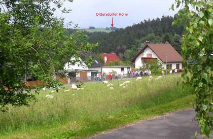 Die Dittersdorfer Höhe vom Waldweg in Kemtau aus gesehen