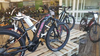 Giant Liv e-Bikes von Frauen für Frauen - Jetzt Probefahren in Sankt Wendel!