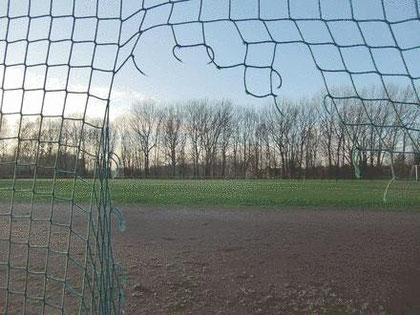 Das Loch im Seitennetz ist zwar nicht das größte Problem auf der Sportanlage Bondenwald, aber auch hier besteht Handlungsbedarf