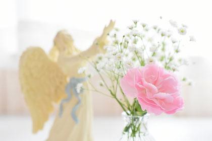 コアエッセンを解き放つイメージの蓮の花の画像