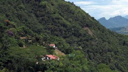 Ausblick von der Finca Cocondo auf den Rio Cauca