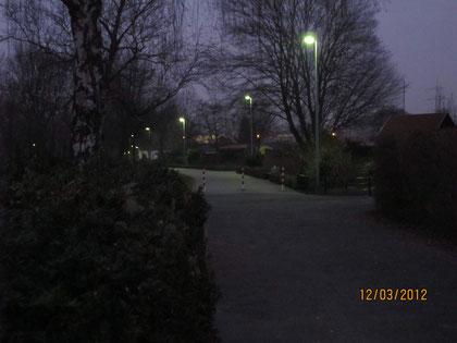 Der Hauptweg vom Westheck zur Flughafenstrasse