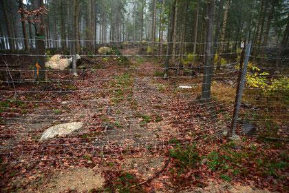 Der Zaun ist mehrere Kilometer lang und über 2m hoch