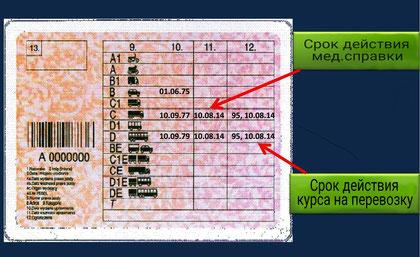 Польские права с вписом 95. Впис 95 в права. Код 95.