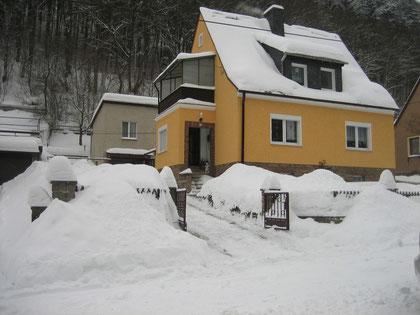 Es ist Winter  - Foto: 27.12.2010