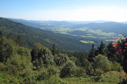 Drachselsried im Zellertal: Ein Paradies für Urlauber im Bayerischen Wald