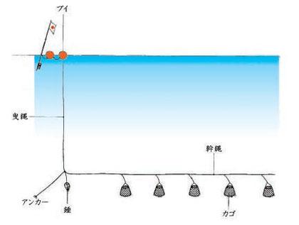 遠洋かにかご漁業