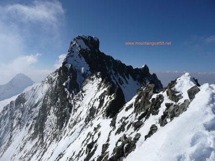 Piz Bernina mit einem Teil des Biancogrates sowie des Spallagrates