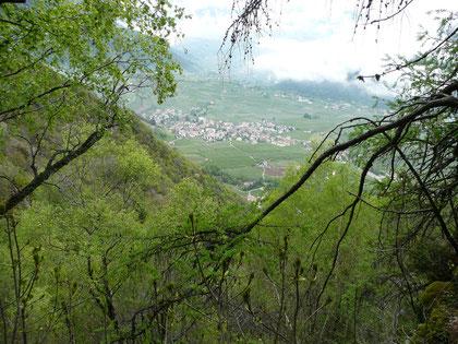 Blick vom Sonnenberger Höhenweg auf Partschins