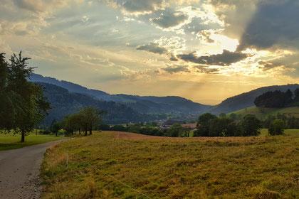 Goldene Stunde im Schwarzwald