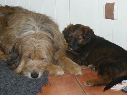 Lotte und Nieke