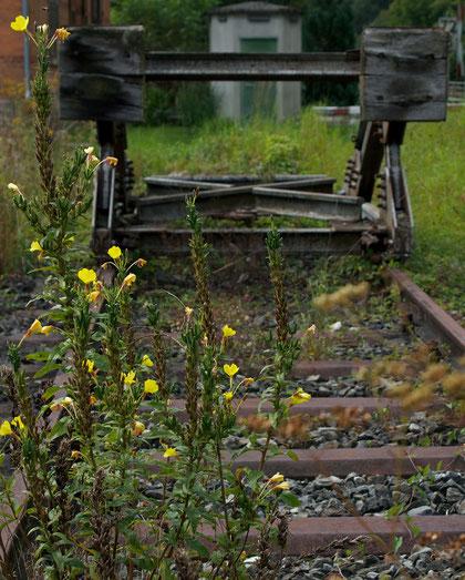 """""""Leben am Prellbock"""", Eyach, Bahnhof, Canon EOS 550d. Foto: Eleonore Schindler von Wallenstern."""