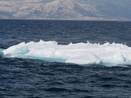 沖に漂う流氷。バックは知床の山。