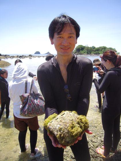 シャコ貝のベビーの写真