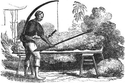 Nettoyage du coton