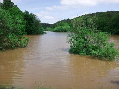 Hochwasser am Sulzbachsee 2013 (N. Bacher www.sfv-schoenaich-steinenbronn.de)