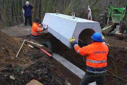 Einbau Amphibientunnel Amphibien Amphibienschutz Amphibienschutztunnel Merkener Busch NABU Düren