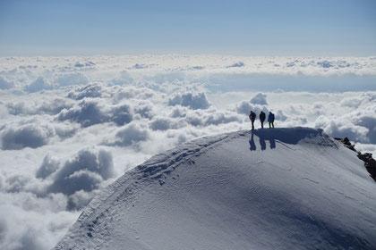 auf dem einfachen Gipfelgrat des Weissmies