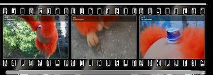 VideoMaking Video Создание Видео