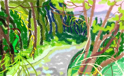 1a passeggiata - Emozioni lungo il sentiero - disegno di Wilma Camatti