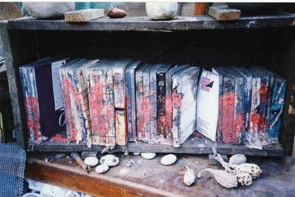 Buried books 2004 (Books and peat bog below Stanage Edge, Peak District)