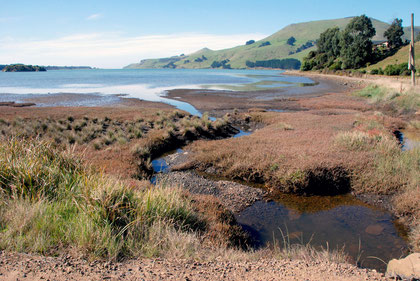 From the west of Papanui Inlet