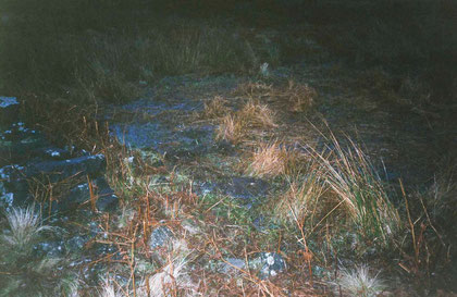 Buried books 2004 (Books and peat bog below Stanage Edge, Peak District)