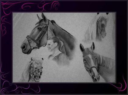 Pferdecollage nach Fotos handgezeichnet