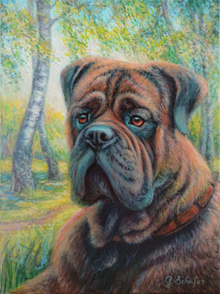 2018 Bullmastiff - 30 x 40 cm,  Acrylic on canvas, Original 98 €. Art prints available.