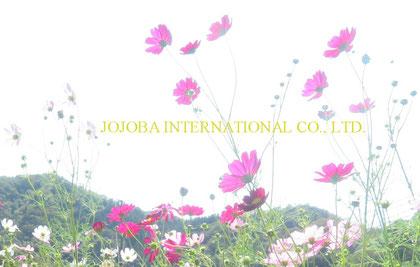 COSMOS  JOJOBA INTERNATIONAL CO., LTD.