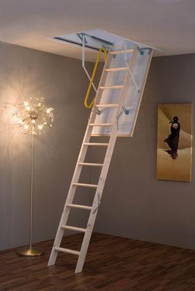 Ecotop escalier escamotable avec rampe