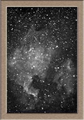 NGC 7000 Northamerica-Nebula - Aufnahme Max Wolf 1891
