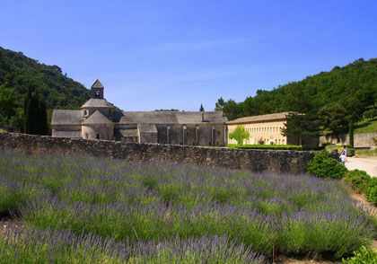 Bild: Abbaye Notre-Dame de Sénanque, Gordes