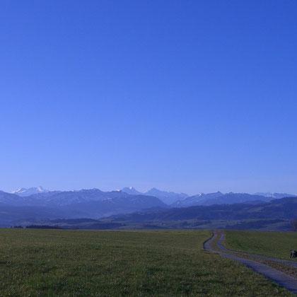 Bruff, Grosswangen