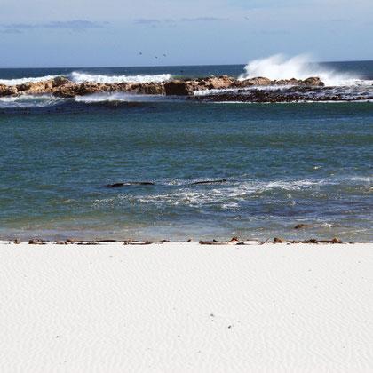 Waves tearing near Olifantbos