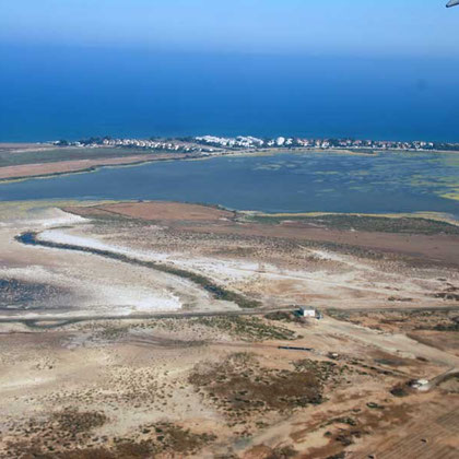 Larnaca salt lakes