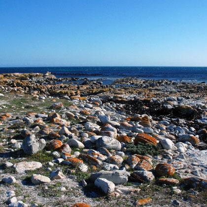Rocks at Olifantbos Bay