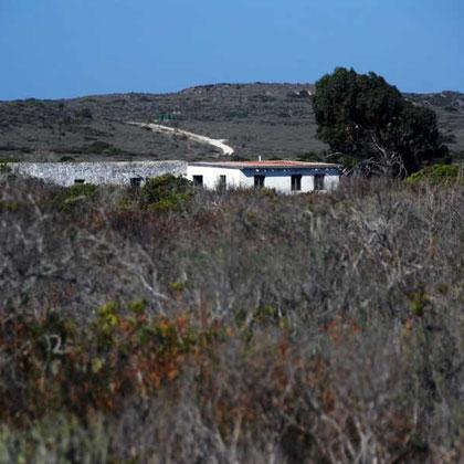 Lowland Fynbos, landward  side, Langebaan Lagoon