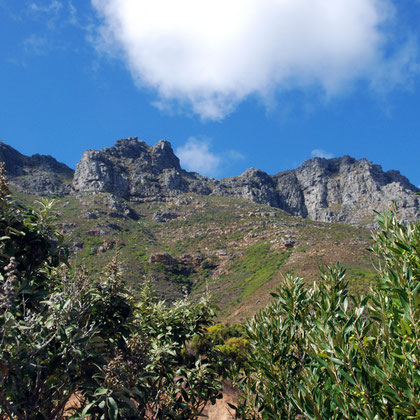 Skyline above Chapman's Peak Drive
