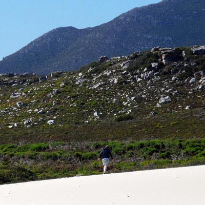 Sand and ridges near Olifantbos
