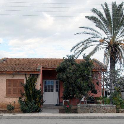 House, palm, towel (Akaki, January 2013)