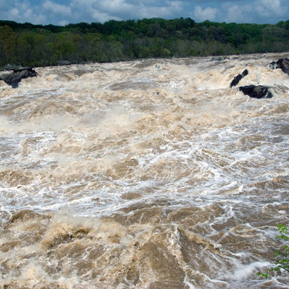 View of Great Falls in flood  in late April 2008