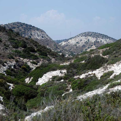 Marl hills behind the coast between Agios Giorgios Alamanos beach and Cyprus Cement Company Works