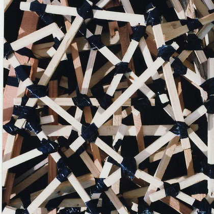 Trellis Work 2006  (Gaffer tape, pine)