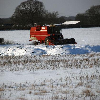 Winter combine