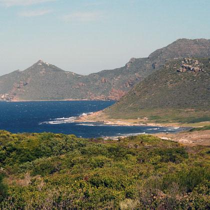 Looking towards Cape Point and Vasco de Gama Peak