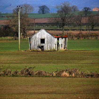 Old wooden barn in Vale of York