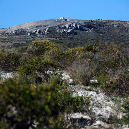 Lowland Fynbos, landward side Langebaan Lagoon with smoothed Granite hills in background